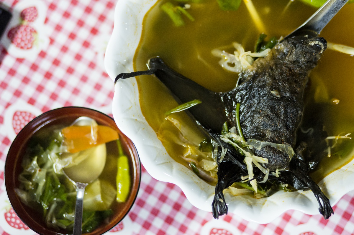 Bat Soup Dinner Palau Island